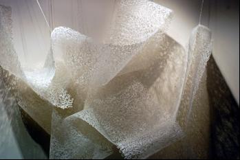 Lace, Bindu Mehra, 2005